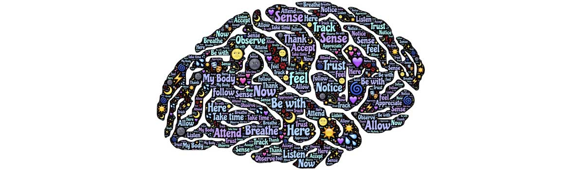 Life Kinetik® - Das sanfte Bewegungsprogramm zur Gehirnentfaltung - Heimsoeth Academy