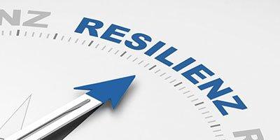 Resilienz Kompakt: Wie lässt sich Krise in Kraft transformieren