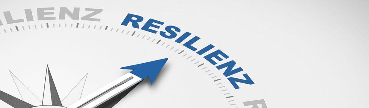Live Webinar Resilienz Kompakt: Wie lässt sich Krise in Kraft transformieren